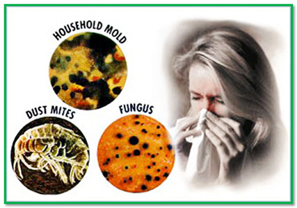 Image result for asthma without allergies