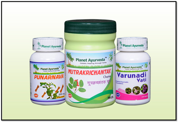 Ayurvedic Treatment for Urinary Tract Infection (UTI) - UTI Care